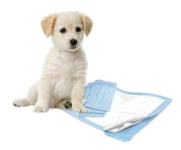 Puppy Training Pads - Vienkartinės šunų palutės 10 vnt. (40x60cm.)