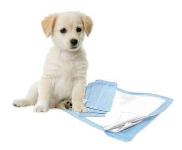 Puppy Training Pads - Vienkartinės šunų palutės 10 vnt. (60x90cm.)