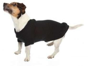 CaniAmici - Drabužiai šunims. Juodas megztukas šunims. Kūno ilgis 35cm.