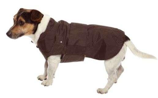 CaniAmici Montreal - Drabužiai šunims. Striukė nuo lietaus. Ruda. Kūno ilgis (50cm.)
