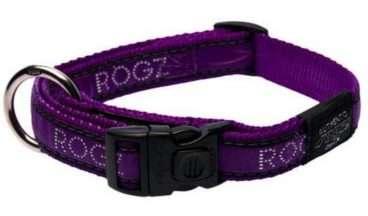 Rogz - Antkakliai šunims. Violėtinis antkaklis su užrašų ROGZ 20-32cm.