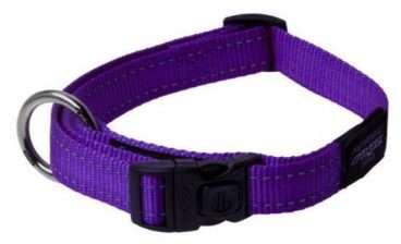 Rogz - Antkakliai šunims. Violėtinis antkaklis su atšvaitu 26-40cm.