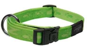 Rogz - Antkakliai šunims. Žalias antkaklis su užrašų ROGZ 26-40cm.