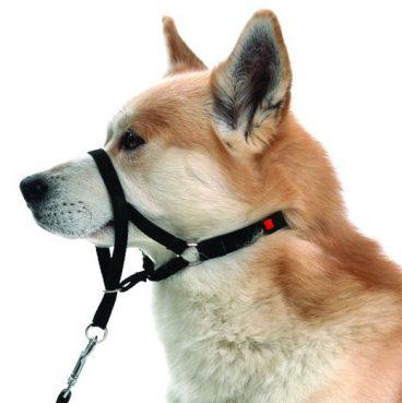 Trixie - Antsnukiai šunims. Šunų antsnukis treniruotėms L/XL (snukio apimtis 37cm.)