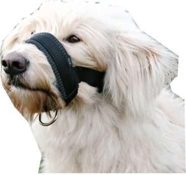 Trixie Antsnukiai Šunims. Nailoninis reguliuojamas antsnukis šunims XXL (snukučio raištis–28–38 cm, kaklo dirželis–22–35 cm.)