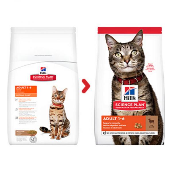 sausas maistas katėms - kačiu pašaras - sausas maistas katėms su ėriena ir ryžiais