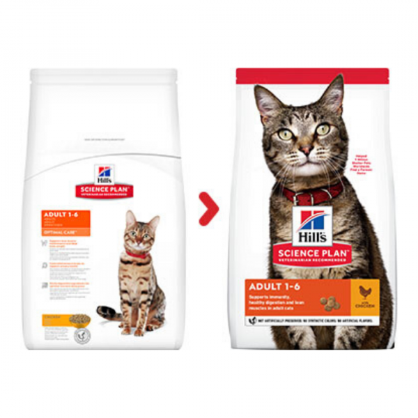 sausas maistas katėms - kačiu pašaras - kačiu ėdalas su vištiena