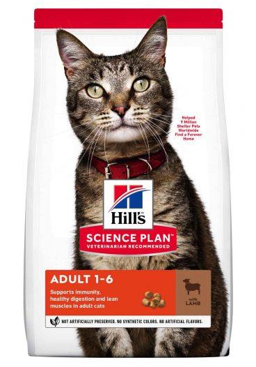 Hill's sausas maistas katems - sausas maistas katėms - Hill's su ėriena ir ryžiais katėms