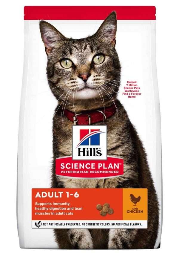 Hill's sausas maistas katems - pašaras katėms - sausas maistas su vištiena katei