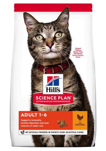 Hill's sausas maistas katems - pašaras katėms su vištiena - sausas maistas su vištiena katėms