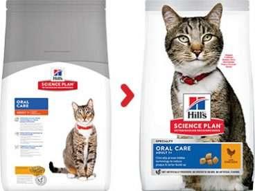 Hill's sausas maistas katems - pašaras katėms - sausas maistas nuo dantu apnasu katėms