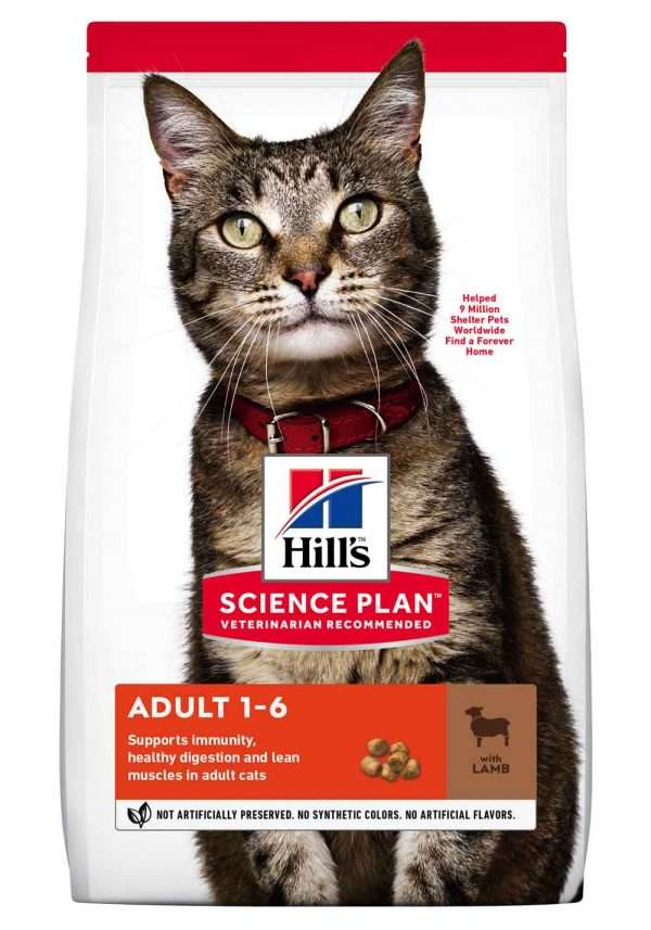 sausas maistas katėms - kačiu pašaras - maistas katėms su ėriena ir ryžiais