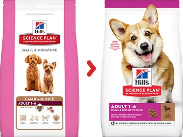 Hill's Sience su ėriena šunims - sausas maistas šunims su ėriena - Hill's sausas maistas šunims