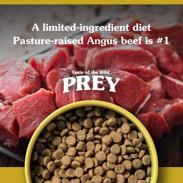 Angus Beef Limited Ingredient Recipe - Prey sausas maistas katėms - sausas maistas katėms su jautiena