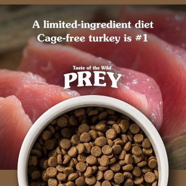 Turkey Limited Ingredient Recipe - Prey sausas maistas katėms - sausas maistas katėms su kalakutiena