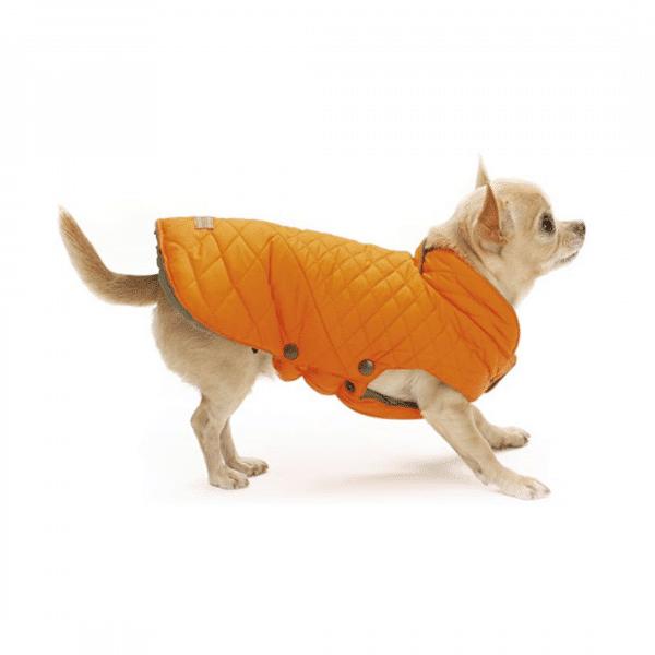 C7174292 Croci Bright - striukės šunims - drabužiai šunims