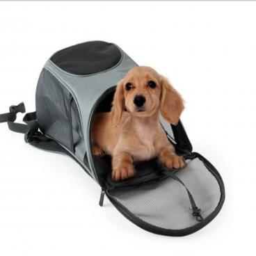 kuprinė gyvūno pernešimui - kelioninė kuprinė gyvūnams - Kelionės įranga šunims